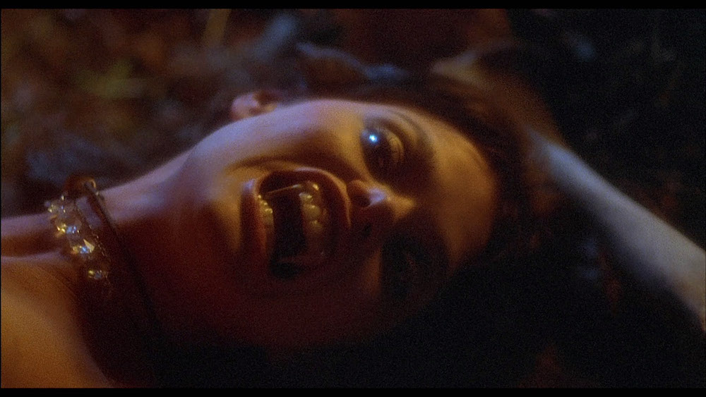 THE HOWLING (1981) • Frame Rated