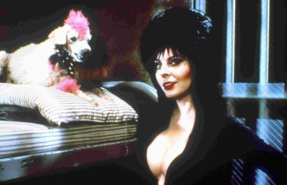 elvira: mistress of the dark (1988)